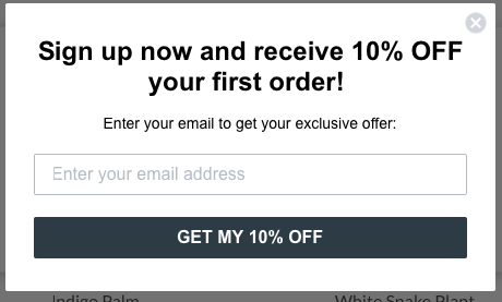 eCommerce email marketing automation type.