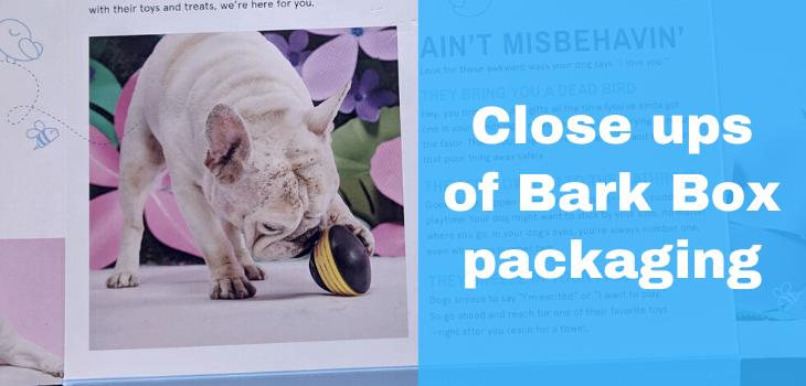 Close ups of Bark Box packaging