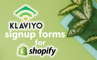 How to connect Klaviyo signup form to Shopify store