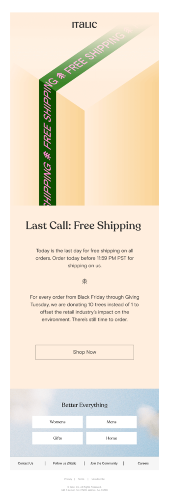 Black Friday campaign email sample
